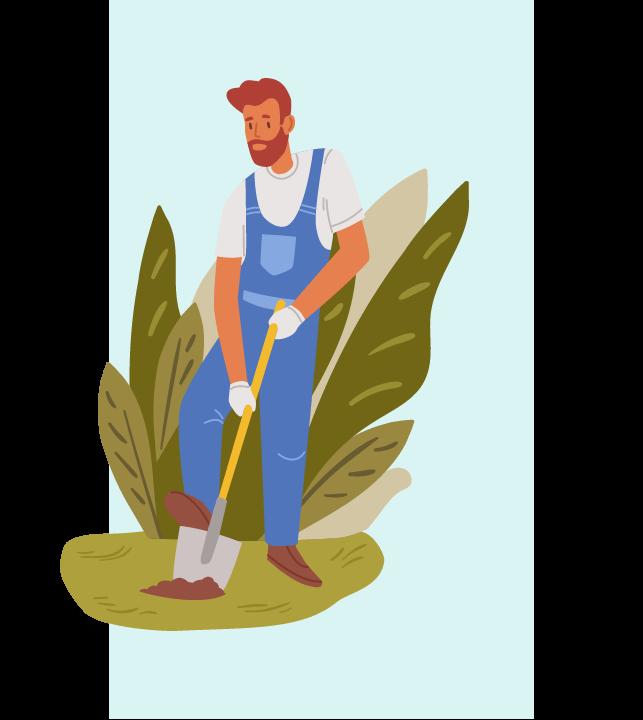 tree removal service san diego